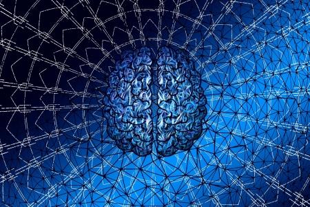 La rete neurale